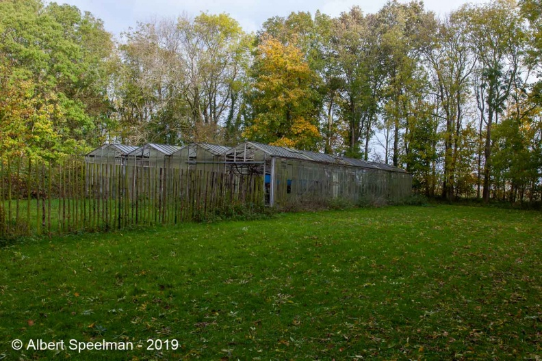 Oostkapelle Ipenoord 2019 ASP 07