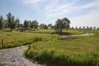 Schoonhoven Zevender 2012 ASP 06