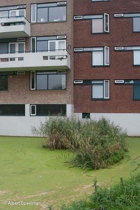 Leiden Paddenpoel 2006 ASP 03