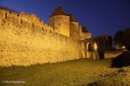 Carcassonne Stad 2011 ASP 009