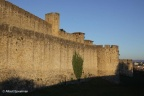 Carcassonne Stad 2011 ASP 026