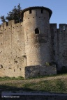 Carcassonne Stad 2011 ASP 031