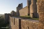 Carcassonne Stad 2011 ASP 033