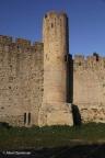Carcassonne Stad 2011 ASP 034