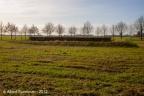 Schalkwijk Marckenburg 2012 ASP 03