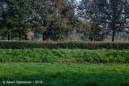 Schalkwijk Marckenburg 2019 ASP 08