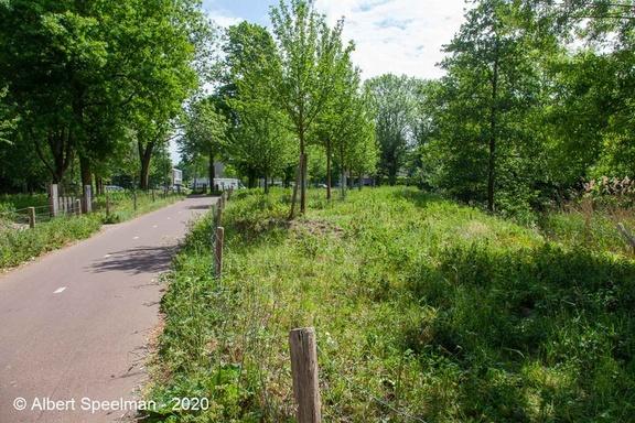 Oisterwijk Durendeal 2020 ASP 01
