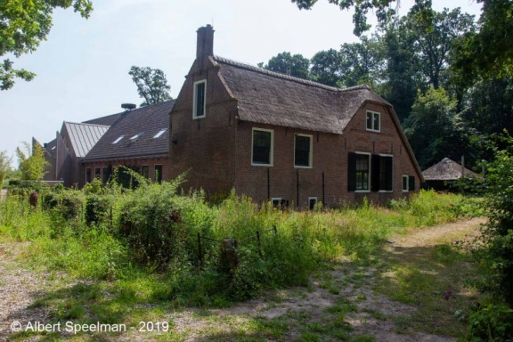 sGraveland Brambergen 2019 ASP 08