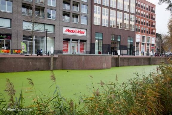 Dordrecht Stad 2014 ASP 40