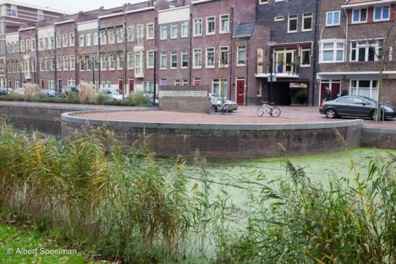 Dordrecht Stad 2014 ASP 41