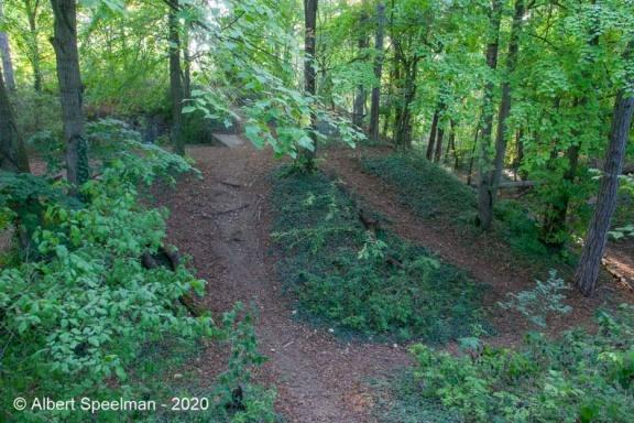 Scharrachbergheim Motte 2020 ASP 03
