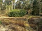 Wapenveld Polberg 2020 06