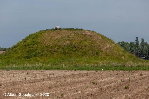 Koudekerke Meinersweg 2020 ASP 05