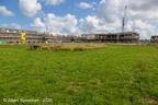 Rijswijk Sion 2020 ASP 04