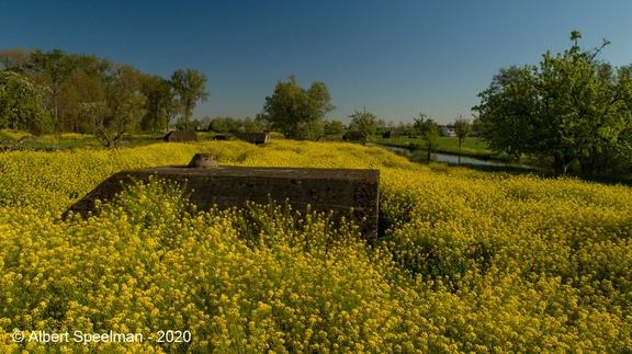 Schalkwijk Groeneweg 2020-2 ASP LF 05