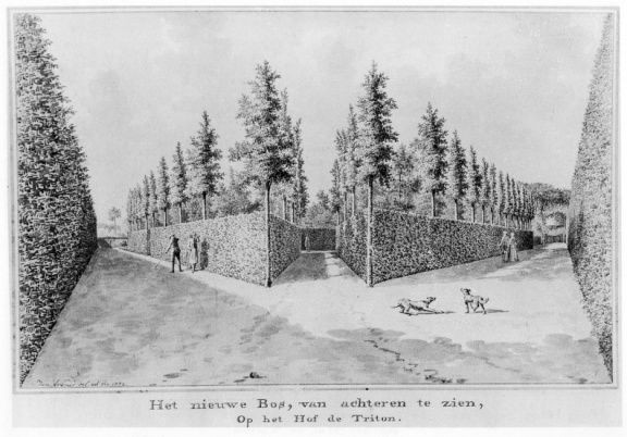 Koudekerke Triton - bos - tekening Jan Arends 1772- HET01