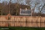 Voorschoten Duivenvoorde 2008 ASP 12