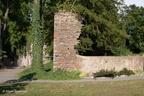 Mansfeld Schloss 2008 ASP 10
