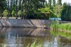 SintMaartensdijk Kasteel 2011 ASP 02