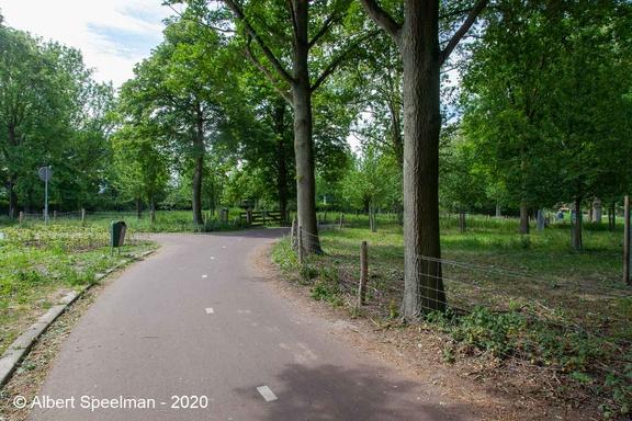 Oisterwijk Durendeal 2020 ASP 09