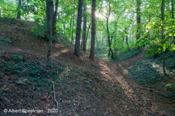 Scharrachbergheim Motte 2020 ASP 04