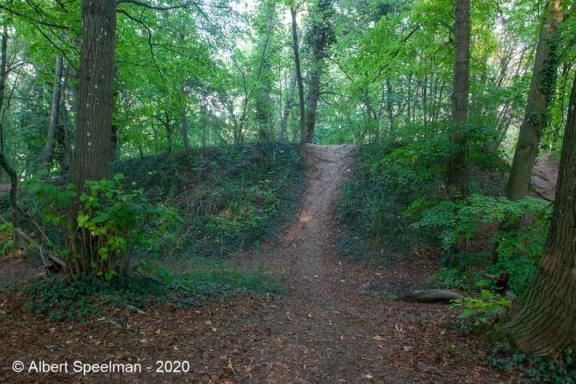 Scharrachbergheim Motte 2020 ASP 07