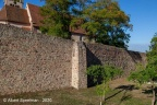 Chatenois Chateau 2020 ASP 03
