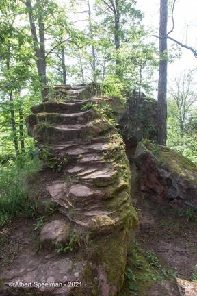 Dambach Hohenfels 2021 ASP 15