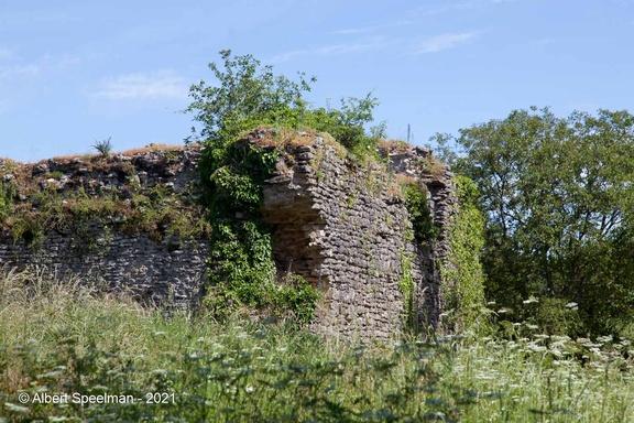Moyen Chateau 2021 ASP 15