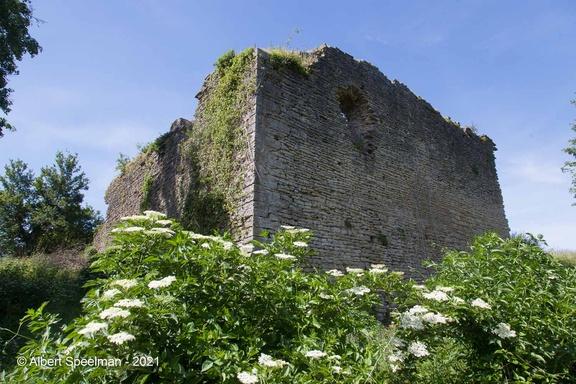 Moyen Chateau 2021 ASP 17